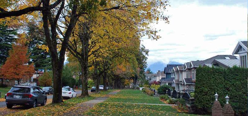 Houses For Sale In Killarney Vancouver Real Estate Killarney