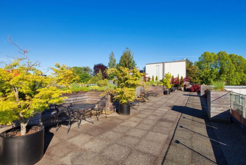 511 - 1445 Marpole Ave Roof Patio-16